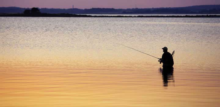 Wade fishing mobile bay for Bay area fishing spots